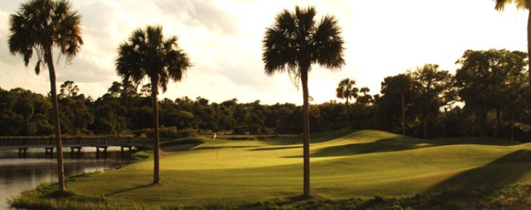 turtlepoint cougar women Turtle point at kiawah island resort - resort in kiawah island: course details, stats, tee-times, packages, photos, ratings and reviews.